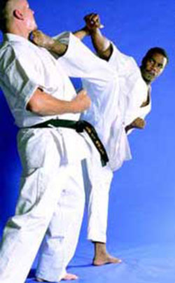 Michael Jai White karate